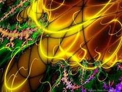 Carnival_lights
