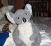 Wally_koala_2